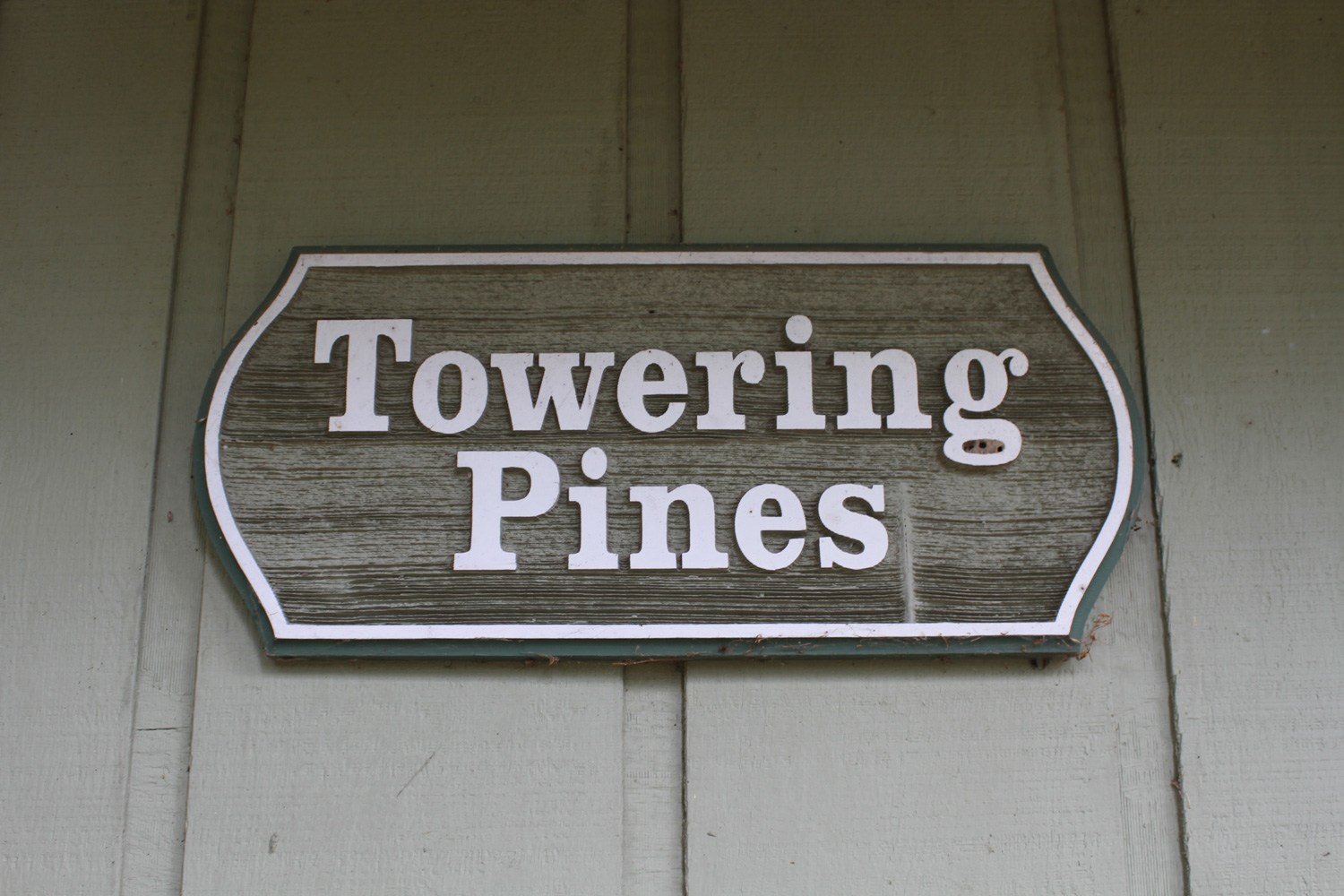 Towering Pines - 2 bedroom cabin near the beach