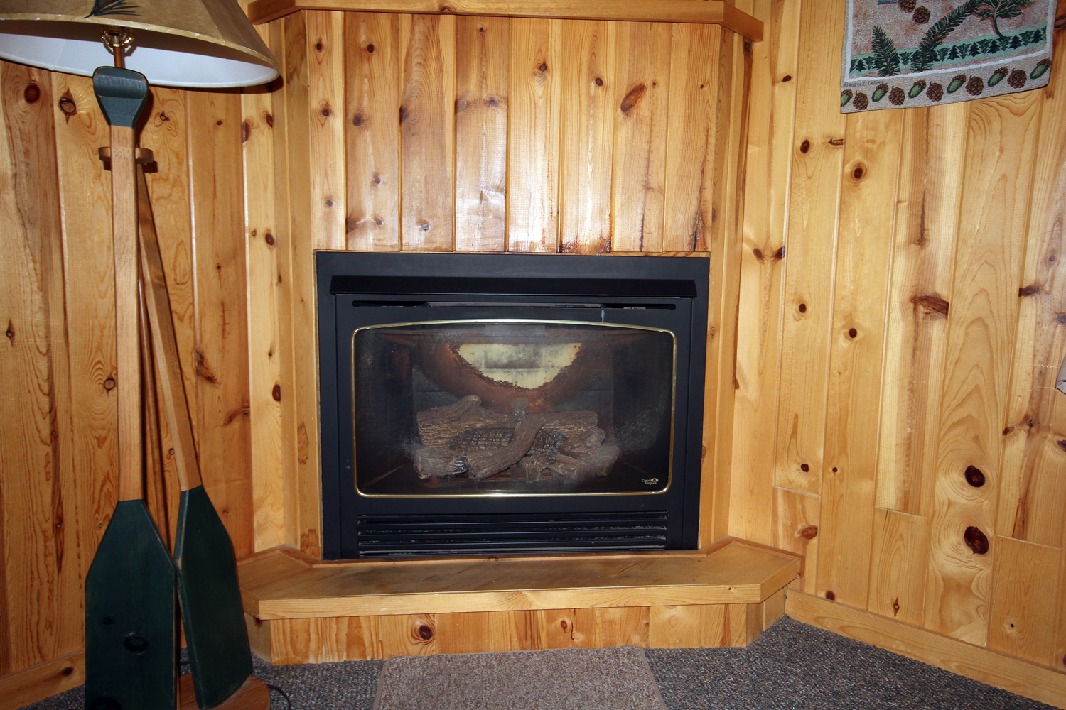 Easy to use Gas Fireplace