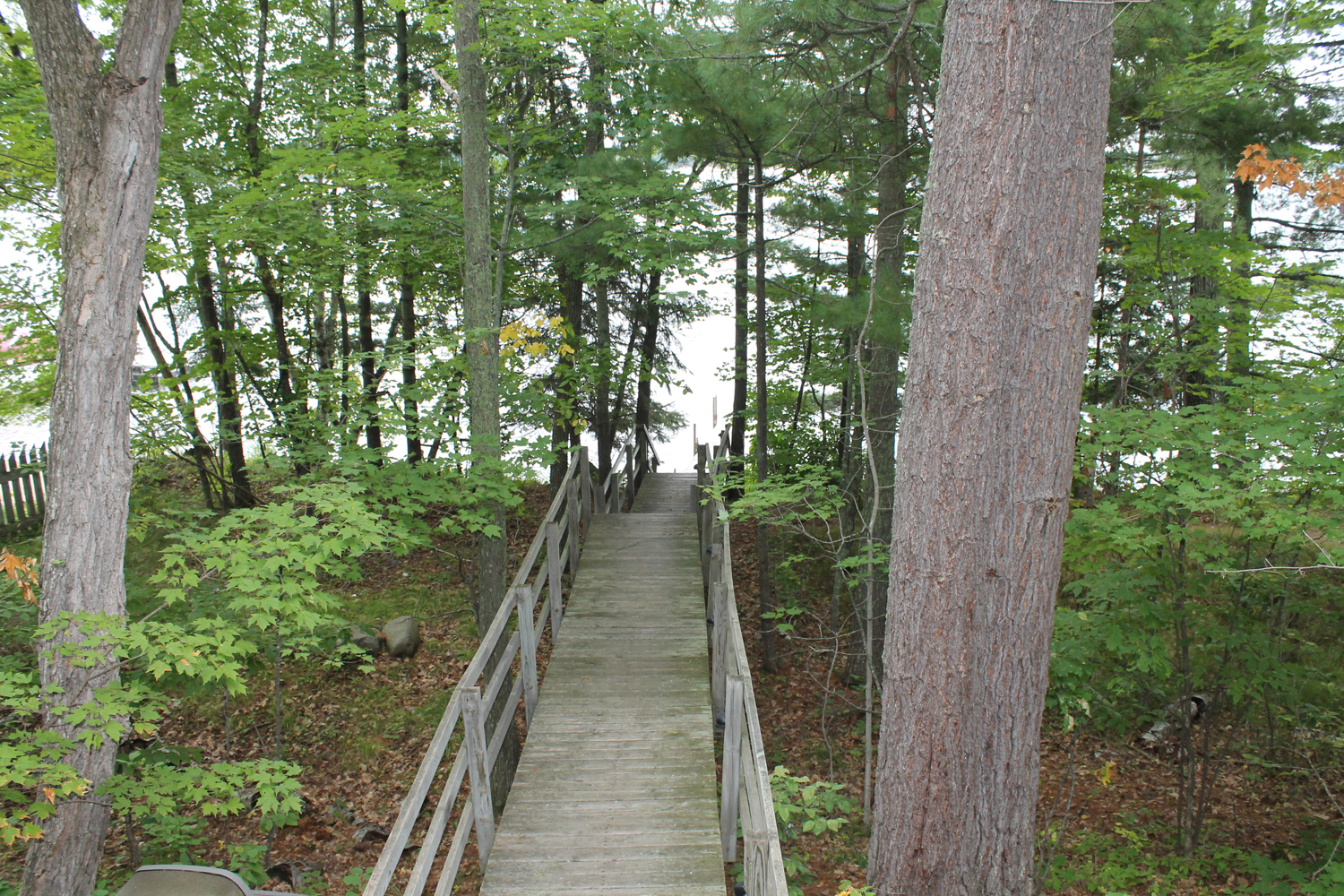 Private dock - just a short walk through the woods